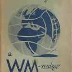 A WM rendszer